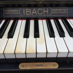 Piano Pic3